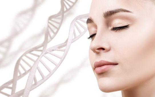 Ringiovanimento del volto con cellule staminali